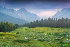 Cordillera de Cresta di Enghe en la mañana de niebla del verano Imagen de archivo libre de regalías