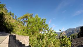 Cordillera de Cordillera, río enorme abajo almacen de video
