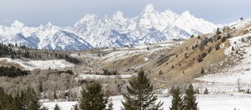 Cordillera de Teton detrás de bosques, de colinas, y de campos foto de archivo