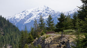 Cordillera del norte de la cascada, Washington State, los E.E.U.U. Fotos de archivo