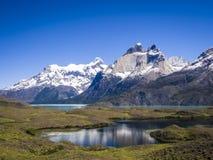 Cordillera del Paine Stock Foto