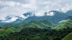 Cordillera dentro del parque de la selva tropical cubierto por la nube imágenes de archivo libres de regalías