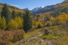 Cordillera el condado de Gunnison de los alces de la montaña de la silla Fotografía de archivo