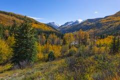 Cordillera el condado de Gunnison de los alces de la montaña de la silla Imagenes de archivo
