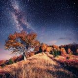 Cordillera en las montañas cárpatas en noche del otoño debajo Fotografía de archivo libre de regalías