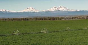 Cordillera majestuosa de la cascada de Oregon de tres soportes de las hermanas Foto de archivo