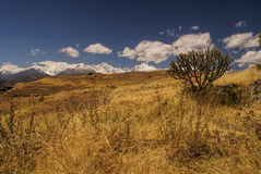 Cordillera Negra in Peru Royalty Free Stock Photo