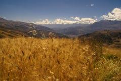 Cordillera Negra in Peru Stock Image