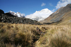 Cordilleras mountain Stock Images