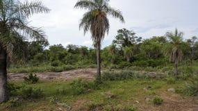 Cordilleras Paraguay de Emboscada Fotografía de archivo libre de regalías