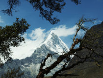 Cordillerasberg Arkivfoto