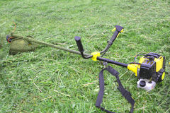 Cordless grass trimmer Stock Image