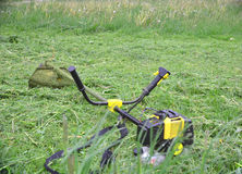 Cordless grass trimmer and weed to be removed Royalty Free Stock Photos