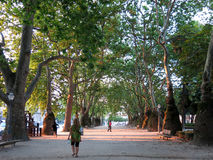 Cordoaria Park in Porto Royalty Free Stock Images