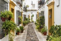 Cordoba Андалусия, Испания: улица стоковое фото