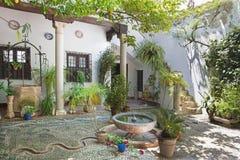 Cordoba - двор зеленого цвета treditonal (pacio) Касы de los луны дома на квадрате de San Andres площади Стоковые Фотографии RF