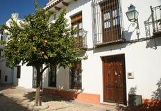 Cordoba, Испания Стоковые Изображения