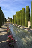 Cordoba Alcazar Gardens. The Promenade of the Kings with its water fountains in the gardens of the Alcazar, in Cordoba, Spain Royalty Free Stock Photo