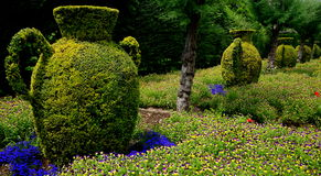 Cordoba Alcazar Park. Bushes grown in the shape of ancient amphoras are located in the park of the Alcazar, the fortress where once the Inquisition had its Royalty Free Stock Photo
