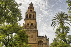 Cordoba Andalucia, Spain: cathedral courtyard Royalty Free Stock Image