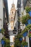 Cordoba Andalucia, Spain: street Stock Photo