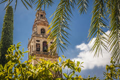 Cordoba, Andalucia, Spain Stock Images