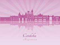 Cordoba AR skylkine in purple radiant orchid Stock Images