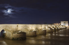 Cordoba Bridge Royalty Free Stock Image