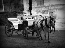 Cordoba carriage, Spain Royalty Free Stock Photos