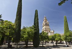 Cordoba Cathedral Bell Tower Royalty Free Stock Photo