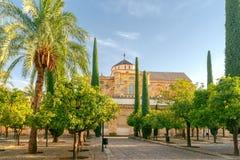 Cordoba. Cathedral. Mesquita. royalty free stock photos