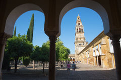 Cordoba - The Cathedral tower from Orange tree Courtyard. Stock Photo