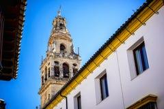 Cordoba Der große berühmte Innenraum der Moschee oder Mezquitas in Cordoba, Spanien stockfotografie