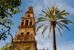 Cordoba. Main bell tower of the Cathedral. royalty free stock photos