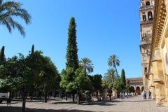 cordoba main mosque s tower Большой интерьер мечети или Mezquita известный в Cordoba, Испании стоковое фото
