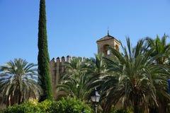 Cordoba meczet Obraz Royalty Free