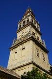 Cordoba-Moschee Lizenzfreie Stockfotografie