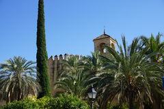 Cordoba Mosque. In Andalusia from Spain Royalty Free Stock Image