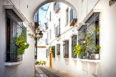 Cordoba: old typical street in the Juderia with plants and flowers. Andalucia, Spain royalty free stock images
