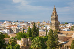 Cordoba - The outlook from castle Alcazar de los Reyes Cristianos to the Cathedral Royalty Free Stock Photo
