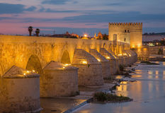 Cordoba - The Roman bridge and Torre de Calahorra Royalty Free Stock Image