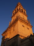 Cordoba's mosque. In the southern Spain region of Andalucia Royalty Free Stock Photo