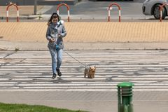 Young woman listening music with earphones and crossing the road with his dog stock photography