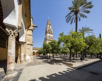 Cordoba Spain, mosque Royalty Free Stock Photography