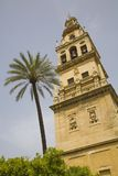Cordoba Spanien Stockbild