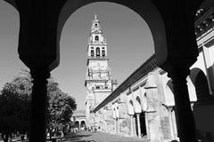 CORDOBA, SPANIEN - 28. MAI 2015: Der Kathedralenturm von Orangenbaum Hof Stockfoto