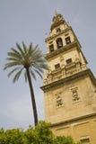 Cordoba Spanje Stock Afbeelding