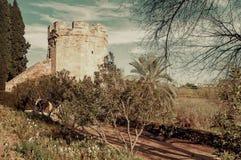 Cordoba-Stadtmauer, Andalusien Lizenzfreies Stockbild