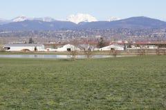 Cordon est de ferme de vallée de Fraser Photo stock