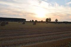 Cordon rural Photos libres de droits